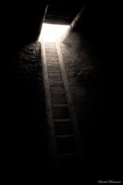 darkness-to-light